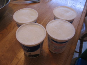 yogurt containers 300x224 How to Make Yogurt with a Yogurt Maker