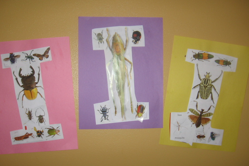 insect collage31 1024x683 7 Fun Crafts for the Letter I