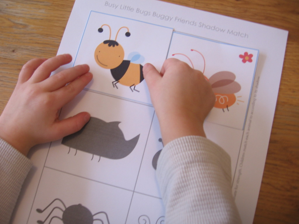 bug shadow match 1024x768 Hands on Math for Preschool: The Letter I