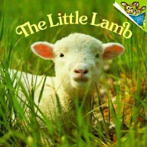 The-Little-Lamb-Dunn-Judy-9780613260268