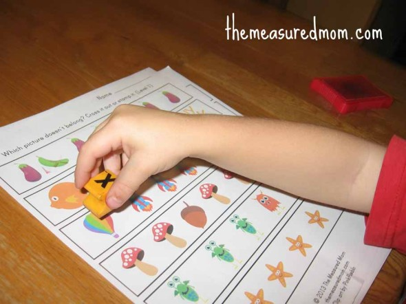 Which one is different - worksheets for preschool and ...
