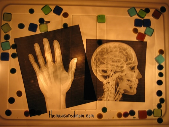 x ray sensory bin 7 the measured mom Easy Sensory Activity for Kids: Make an X Ray Light Box!