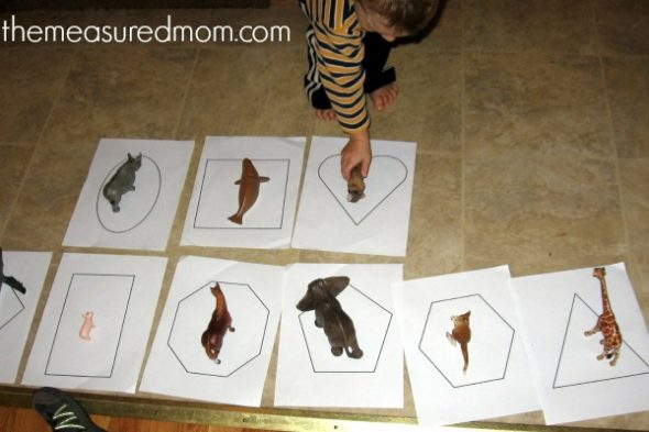 Math Activities with Animals for Preschoolers - simple and ...