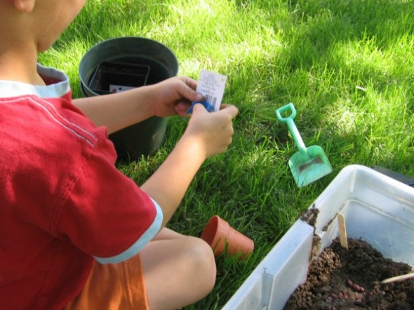 garden sensory tub 4 590x442 Summer Boredom Buster for Preschoolers   Make a garden in a box