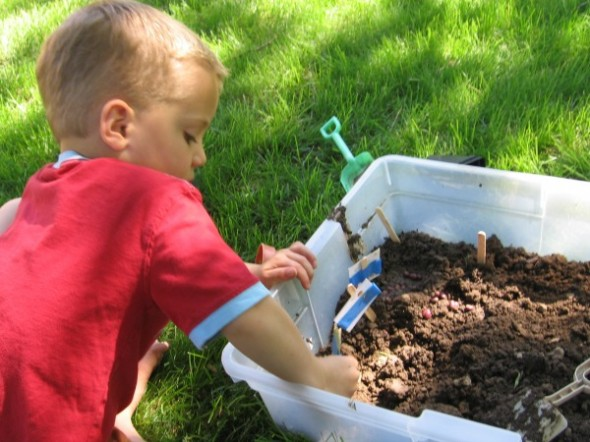 garden sensory tub 5 590x442 Summer Boredom Buster for Preschoolers   Make a garden in a box