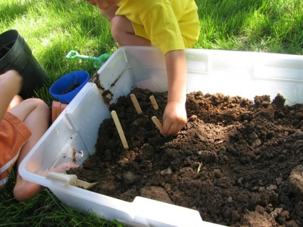 garden tub 4 590x442 Summer Boredom Buster for Preschoolers   Make a garden in a box
