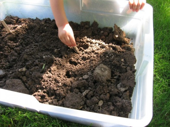 sensory tub 3 590x442 Summer Boredom Buster for Preschoolers   Make a garden in a box