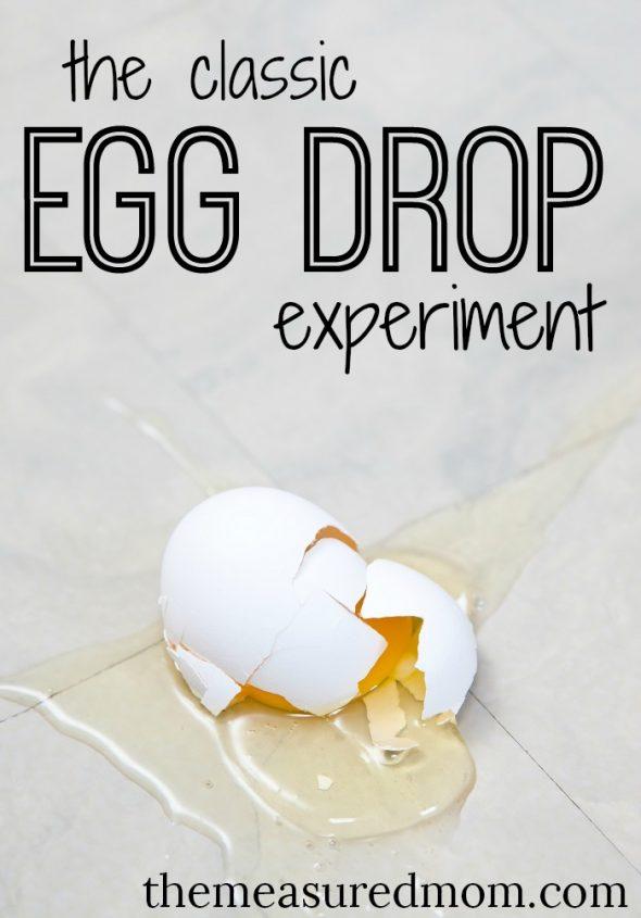 egg drop essays
