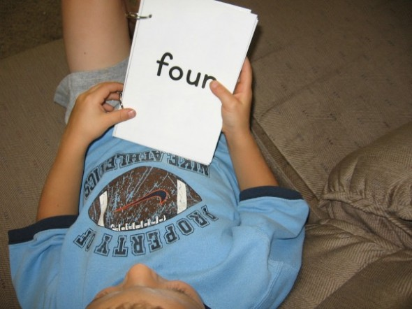 fall counting book 2