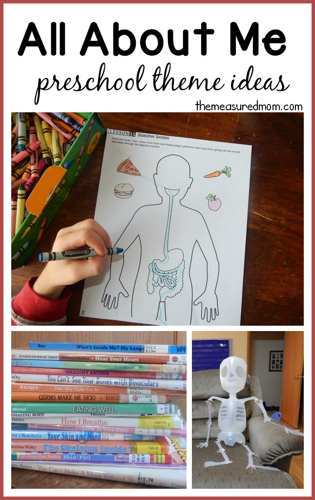 all about me art for preschool all about me fabulous science activities from our time 566