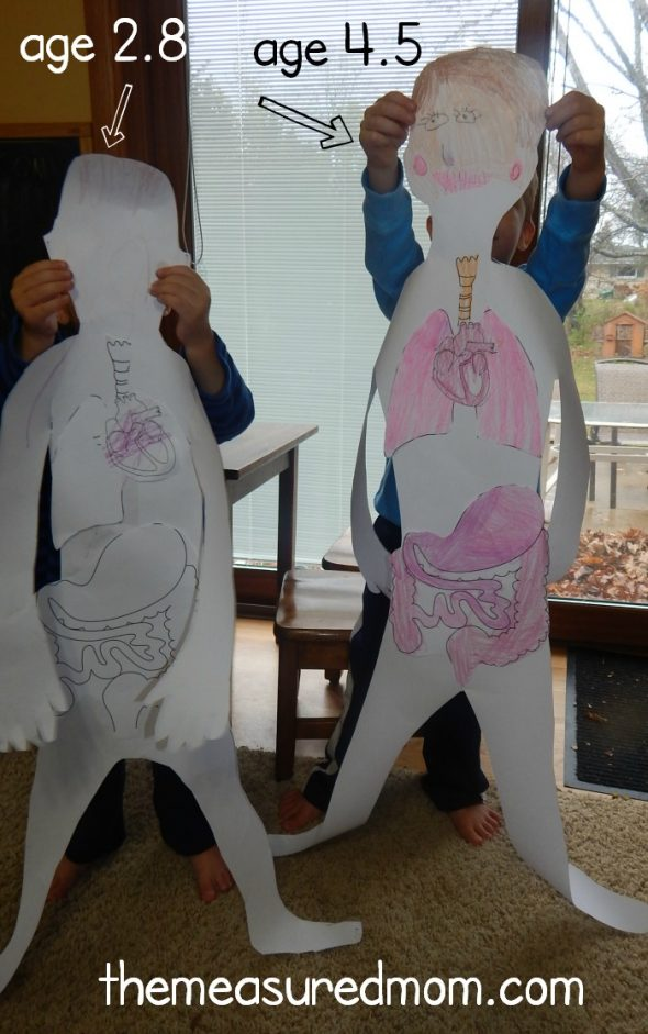 human body activities for preschoolers all about me fabulous science activities from our time 737