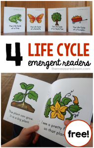 Life Cycles – 4 new sight word books!