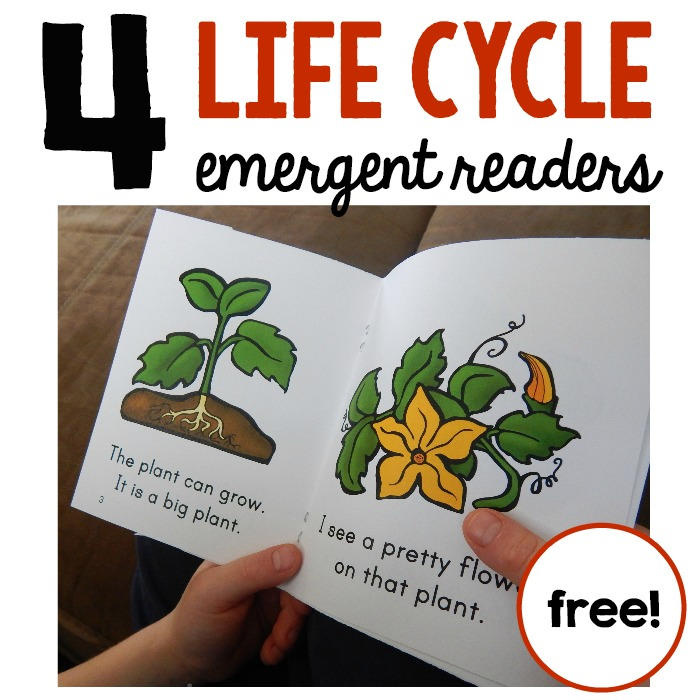 If you're teaching about life cycles in kindergarten or first grade, you'll love this set of FREE emergent readers for your students to read and take home!