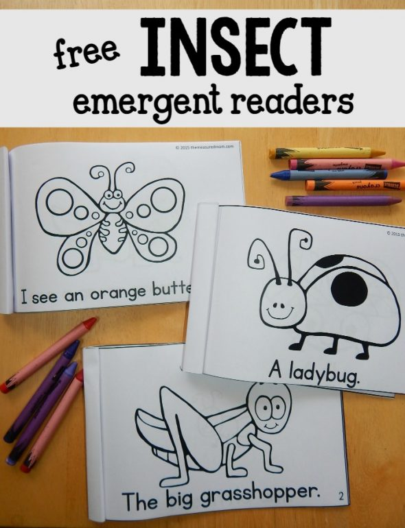 emergent reading and writing activities for preschoolers