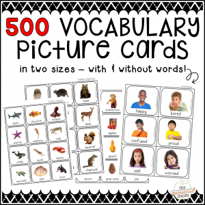 Vocabulary picture cards product image