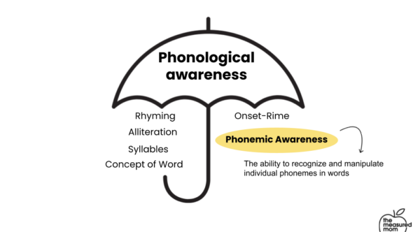 The difference between phonological and phonemic awareness